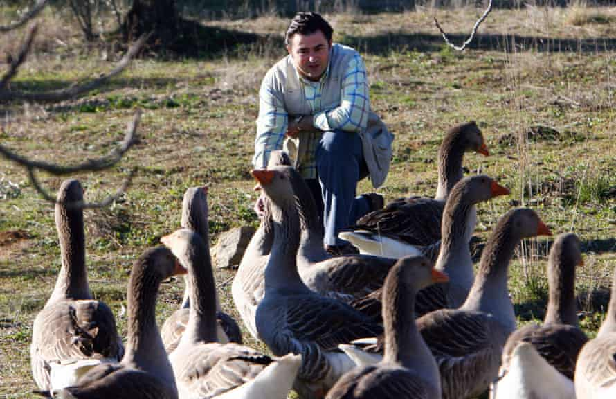 Farmer Eduardo Sousa with  his geese in  Badajoz, Spain.