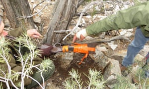 A Winchester Model 1773 was found by park workers in Great Basin National Park, Nevada, leaning against a tree