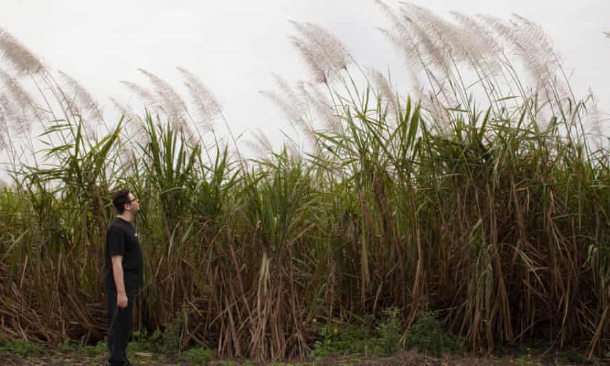 Ben taking a walk around the sugarcane fields that surround Miracle Village
