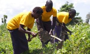 Kenya's small-scale farmers borrow seeds to grow potential