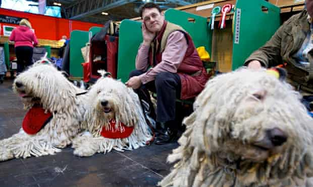 Backstage at Crufts dog show in 2014. The NEC in Birmingham has hosted the annual competition since