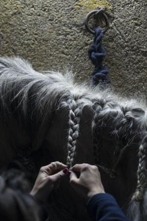 A woman braids her horse's maine