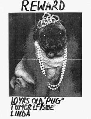 Bejeweled pug