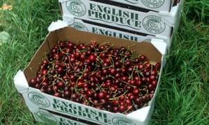 A box of English cherries.