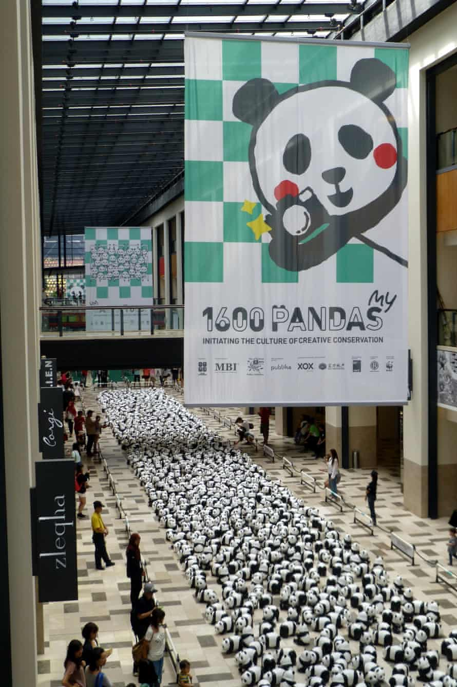 This is what 1600 pandas looks like