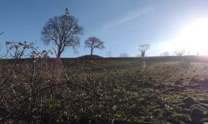 Yarner Beacon, near Totnes in Devon