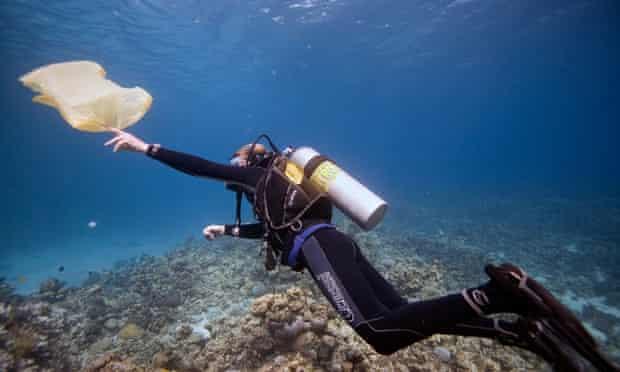 A diver retrieves a plastic bag in the Red Sea, Dahab, Egypt