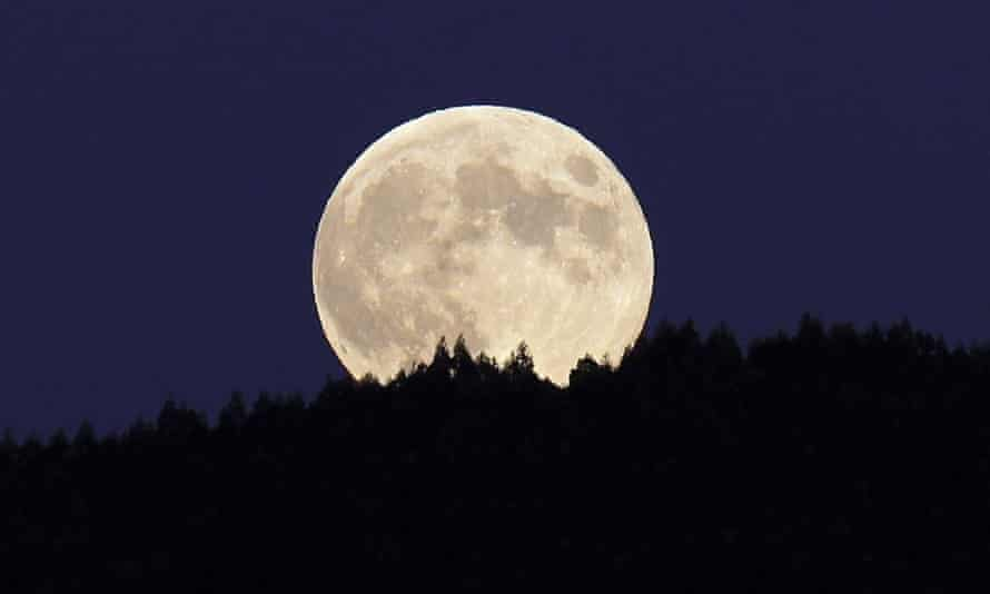 Unimaginable? Life without the moon.