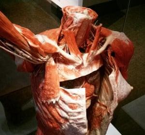 Christie Hoyt's #MuseumSelfie
