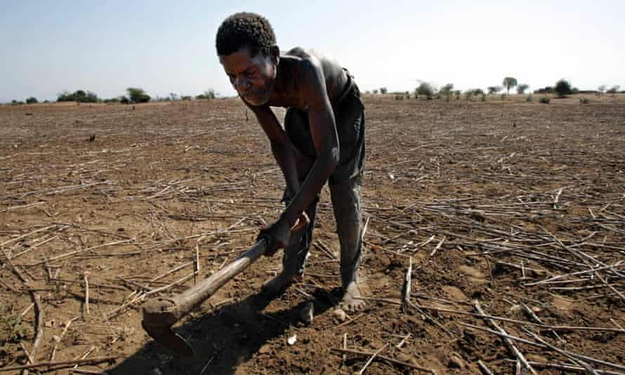 A Malawian farmer working on his land. A new study finds that climate change could slow economic growth in poor countries more than previously though, for example by