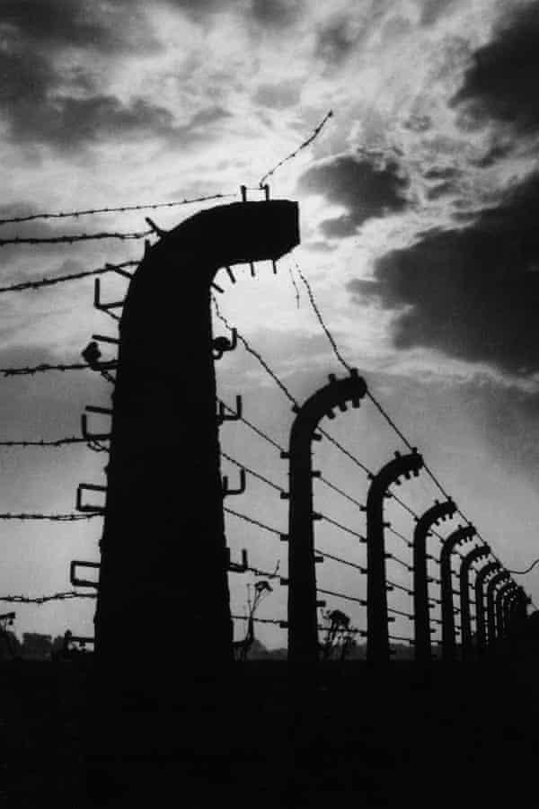 The Auschwitz fence.