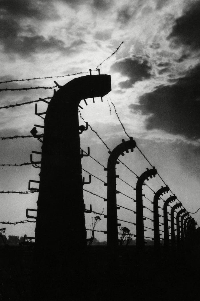 Tales from Auschwitz: survivor stories | World news | The