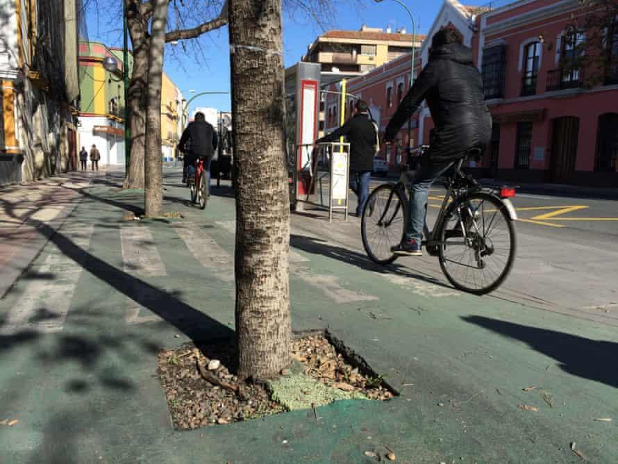 Seville bike lane