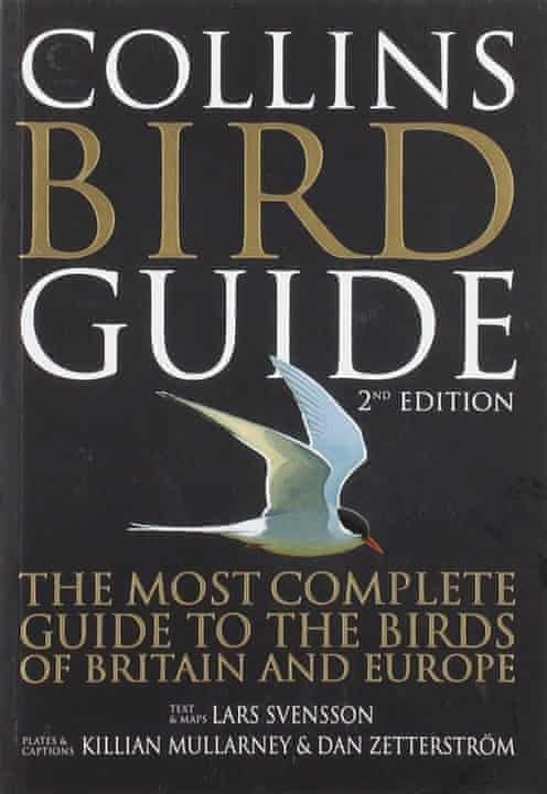 Bird Guide by Lars Svensson, Peter J. Grant, illustrations by Killian Mullarney and Dan Zetterström (Harpercollins, 1999)