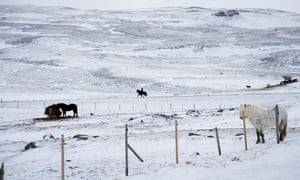 Person horseback riding during winter in Iceland.