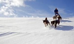 Dog-sledding in Norway.