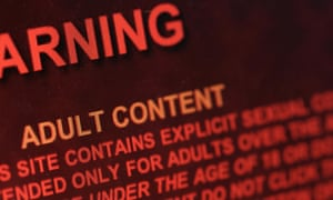 The majority of young people use porn to find out about sex.