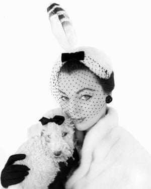 Dogs in Vogue in 1954