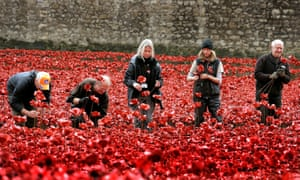 volunteers pull up individual poppies