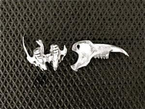 fish bone fragments