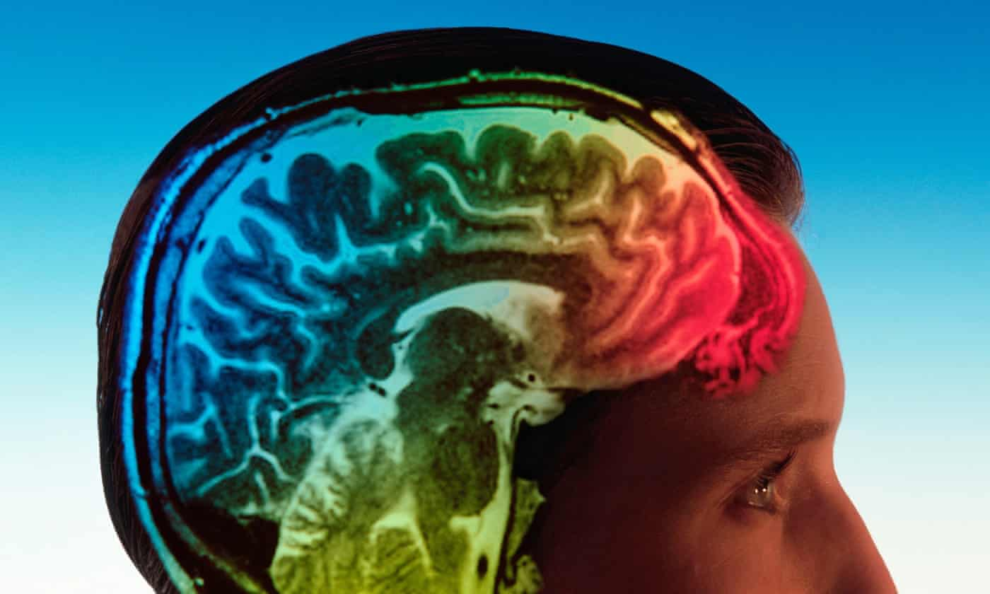 Serotonin map of brain could lead to better targeted antidepressants