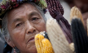 A woman participates in a protest against transgenic corn last year in Mexico City, Mexico. Monsanto announced that its first-quarter earnings dropped on lower sales to South American farmers.