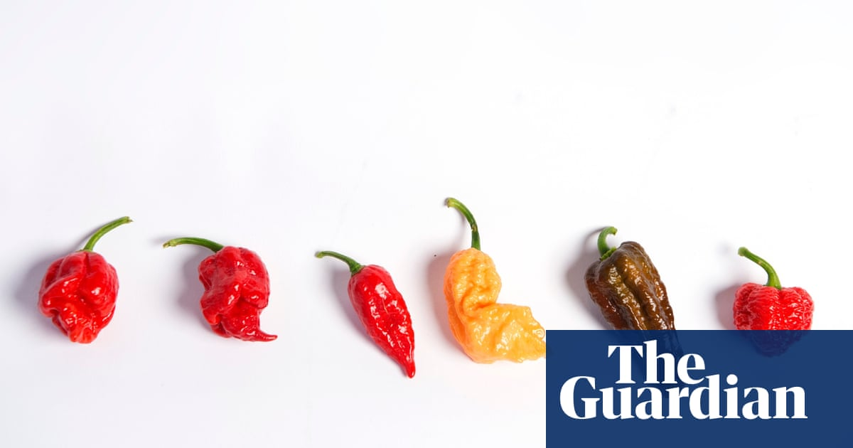 Scoville Scale The Hottest Chillies In The World In Pictures Life And Style The Guardian
