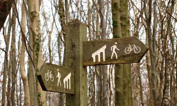 Wooded areas close to conurbations provide space for running, cycling, climbing and dog walking.