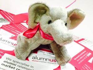 The DJS Research elephant mascot.