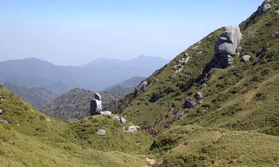 Hiking trail near the top of Miyanoura-dake, Yakushima, Japan