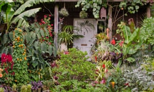 The Exotic Garden in Norwich was created by Will Giles and opened to the public for more than 30 years