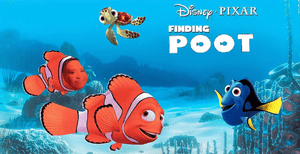 Finding Poot