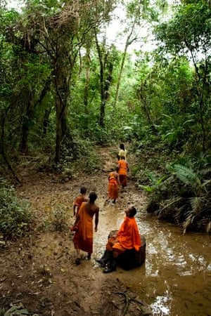 Cambodian monks looking for tress to bless