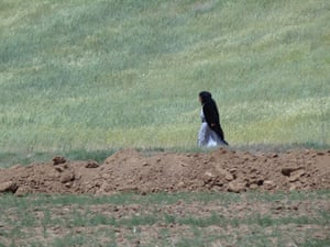 Kurdish Woman Strides across Landscape - En route to Sanandaj - Western Iran