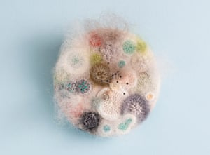 A mouldy but a goody ... brooch by Elin Thomas.