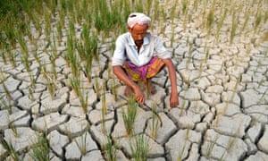 A farmer waits for rain in Assam.