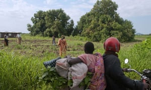 TechnoServe hope to engage up to 15,000 farmers like the ones pictured here, working their land on the outskirts of Juba.