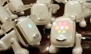 Japanese toy maker Sega's pet dog robots