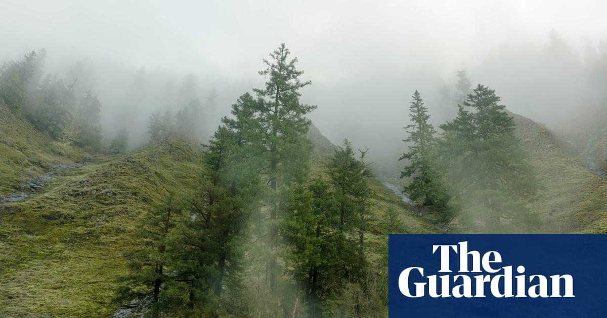 landscape in the mist full movie online