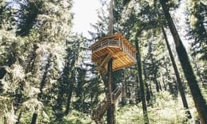 Cabanes Sister treehouse outside Bilbao