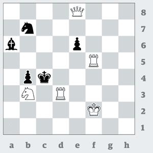chess 3418