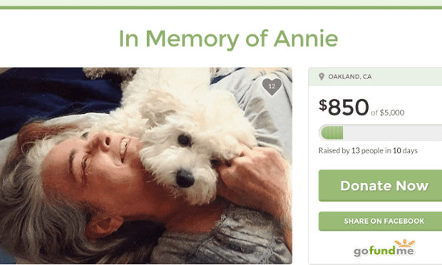 in memory of annie