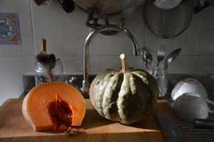 A pumpkin, yesterday