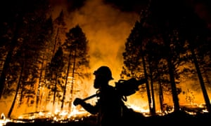 "Los Padres National Forest firefighter Jameson Springer watches a controlled burn on the so-called ""Rough Fire"" in the Sequoia National Forest, California, on August 21, 2015."