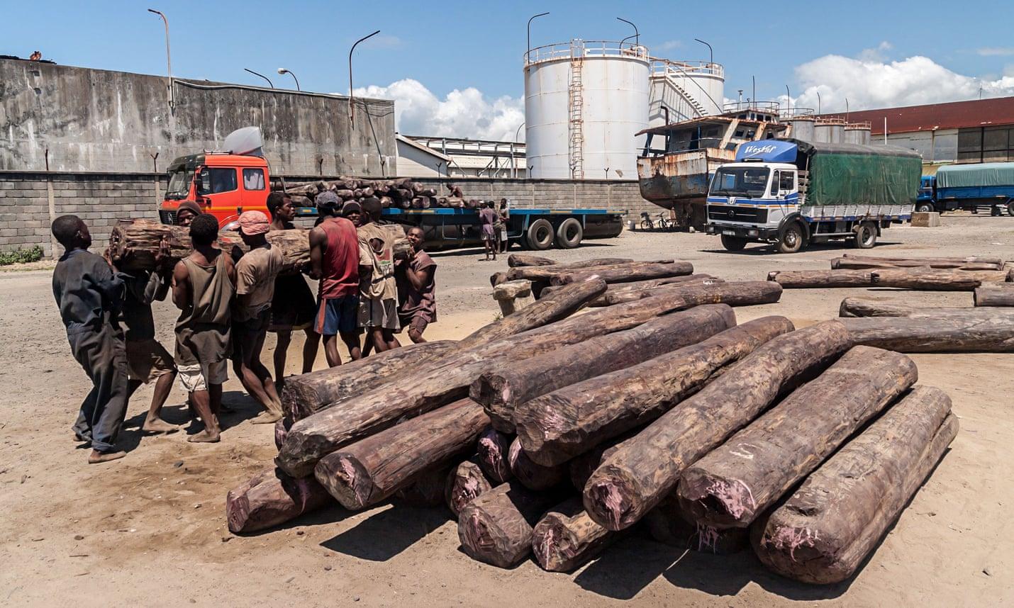 loads rosewood Toamasina
