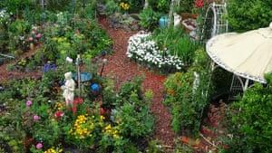 Back Garden in the suburbs