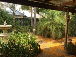 My back garden in Perth Western Australia
