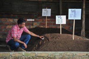 Mominur Rahman of BUET takes a temperature reading of the composting mixture.