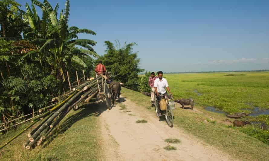 Cycling on flat-as-a-chapatti Majuli.