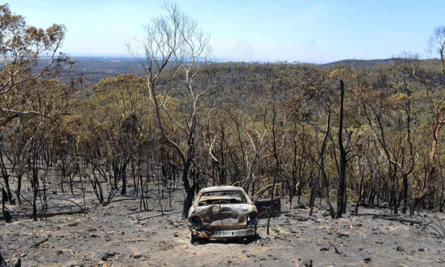 Damage from a bushfire near One Tree Hill in the Adelaide Hills last month.